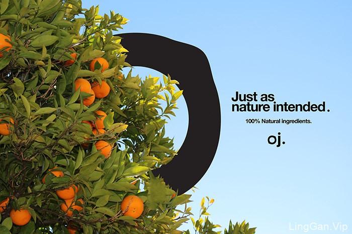 一款果汁LOGO及品牌视觉形象设计