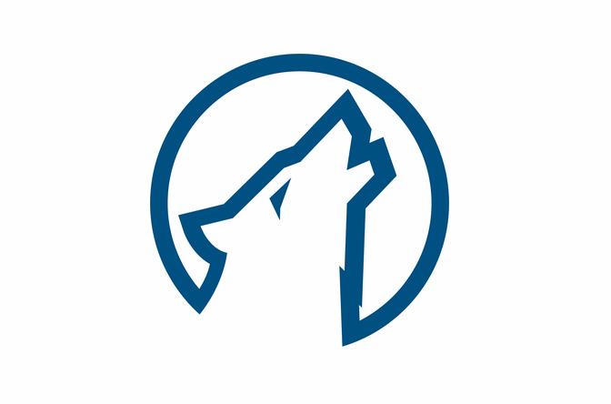 死忠粉球迷为森林狼球队设计了新LOGO,还有备选方案