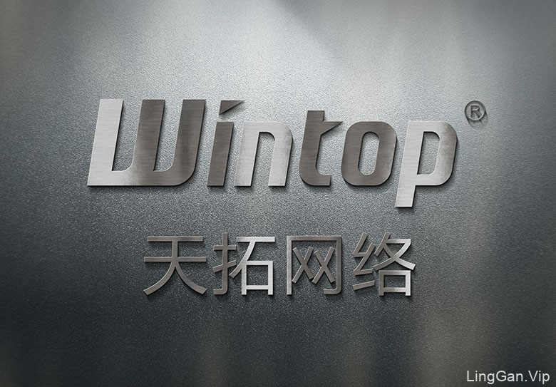 Wintop(天拓)软件服务品牌形象设计欣赏