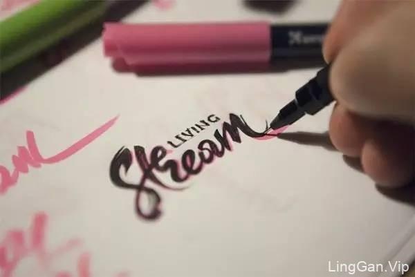 太美了!精致的手绘logo欣赏
