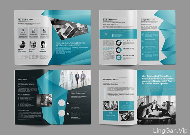 国外CRISTAL Pioneer商务画册模版设计作品