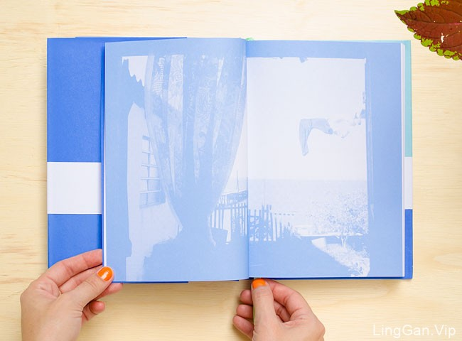 巴西Estudio书籍设计作品案例