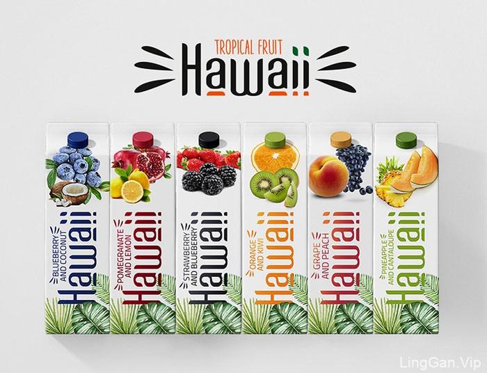 国外精美的Hawaii果汁包装设计