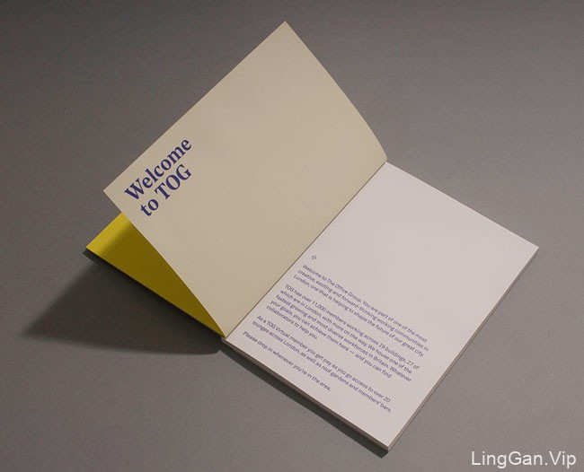 英国TOG公司企业画册设计欣赏