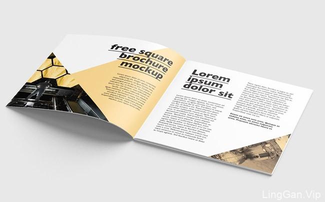波兰设计师MockupsDesign画册模版VI设计作品