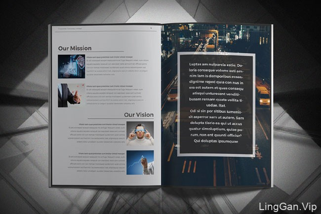 国外设计师Arifur Rahman商务画册模版设计又一作品