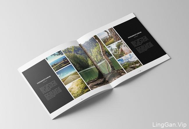 国外Jonathan doe摄影画册设计模版展示