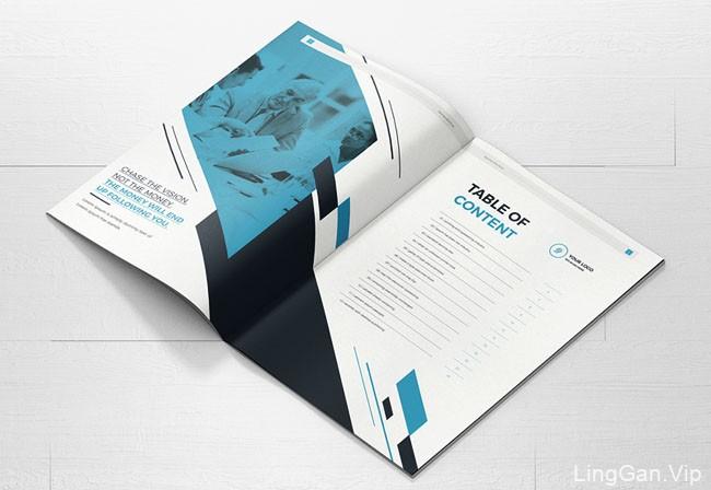 美国设计师Mondo Design商务画册模版设计(二)