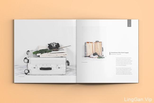 国外简洁大方的IUIGA画册设计欣赏