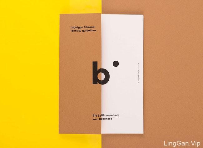 国外Biobo浓缩果汁品牌画册设计作品