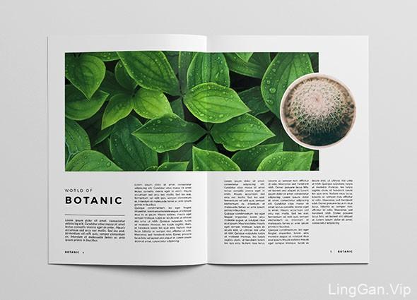 简洁美观的Botanic植物杂志模版设计作品
