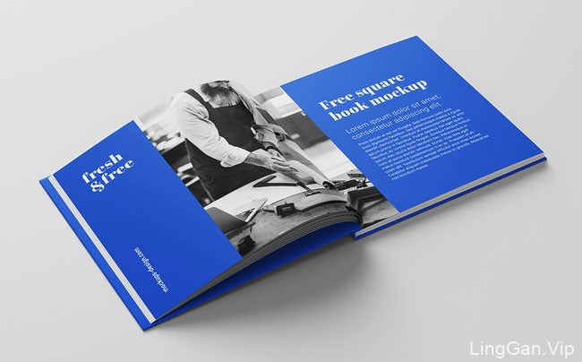 波兰书籍模版设计作品