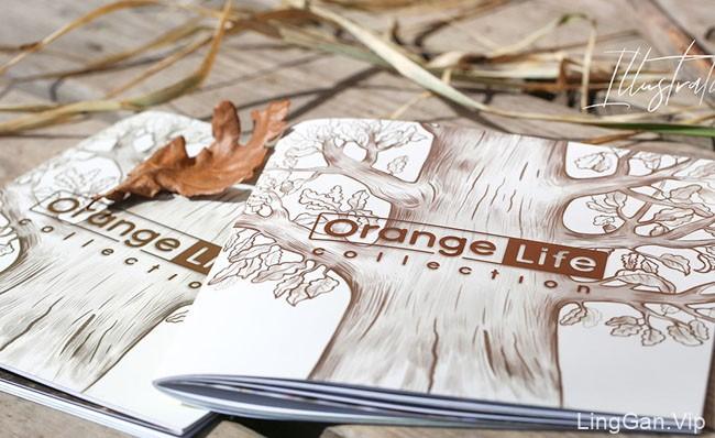 Orange Life玩具公司目录画册设计
