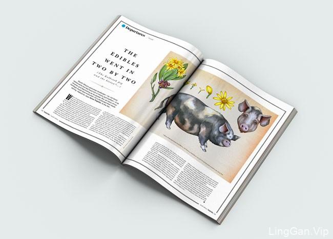 highlife杂志封面插画设计