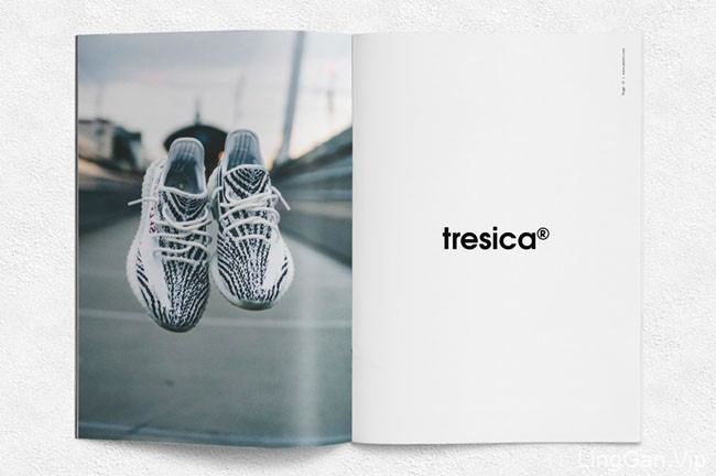 清爽简约的鞋品牌画册模版设计