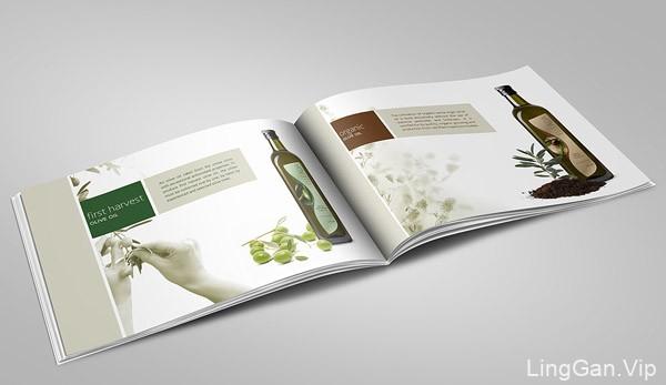 Andania Gaia橄榄油品牌画册设计