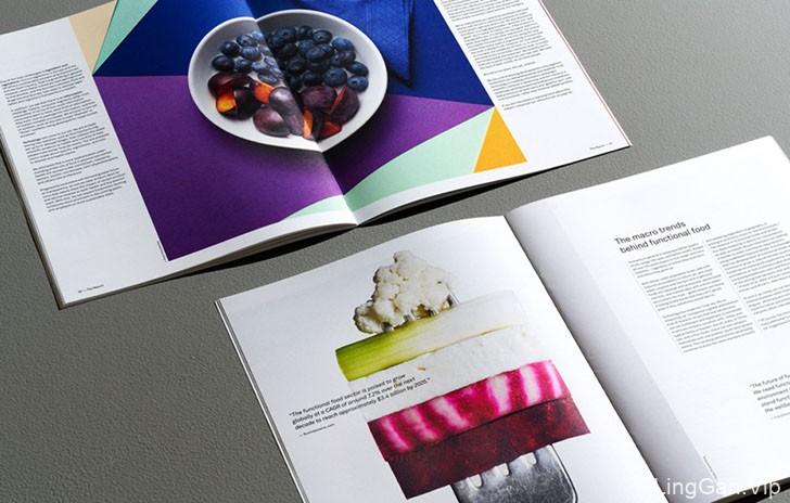 The Report功能性饮食健康食品书籍设计