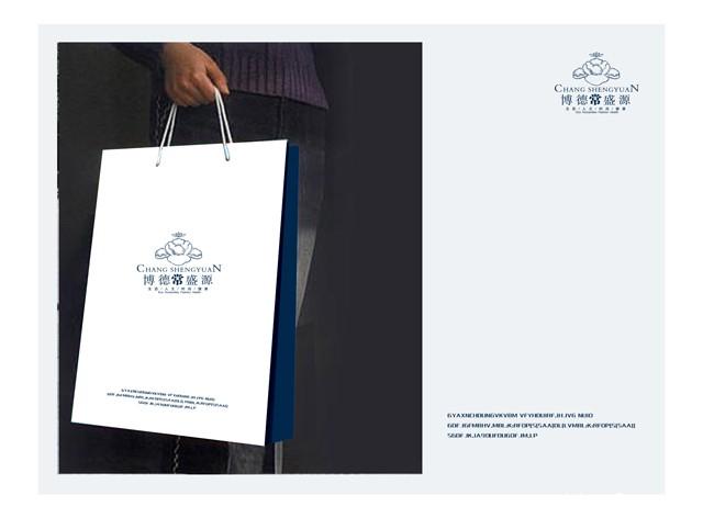 博德常盛源企业VI设计+logo设计欣赏