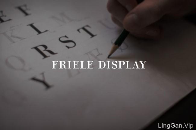 国外挪威Friele集团企业品牌形象VI设计分享