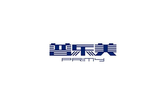 国外蓝色圣火品牌VI设计作品投稿24P