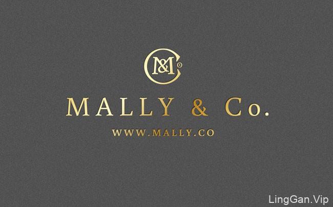 国外银灰色风格的Mally & Co高档时装品牌VI设计分享