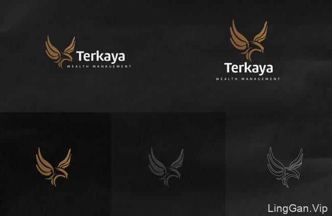 国外VI设计Terkaya理财品牌企业形象设计