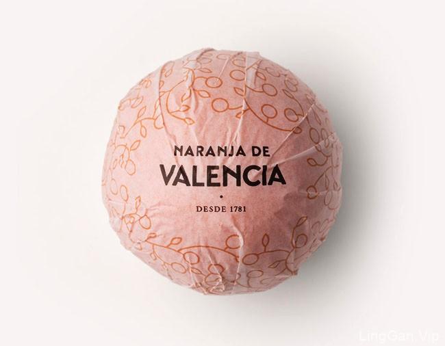 国外Valencia橙子生产与出口品牌vi形象设计