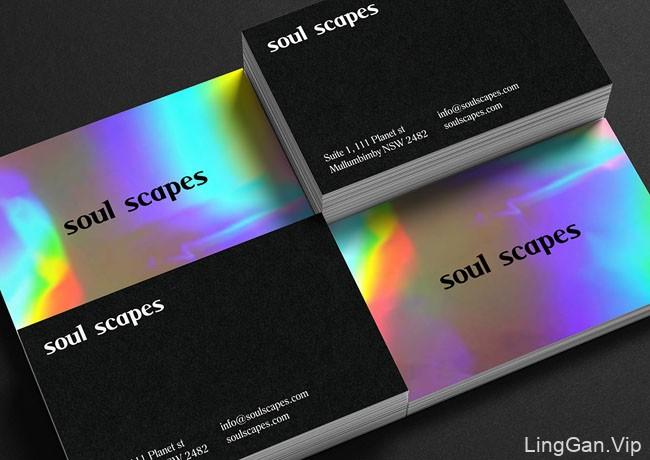 Soul Scapes品牌VI设计基础部分