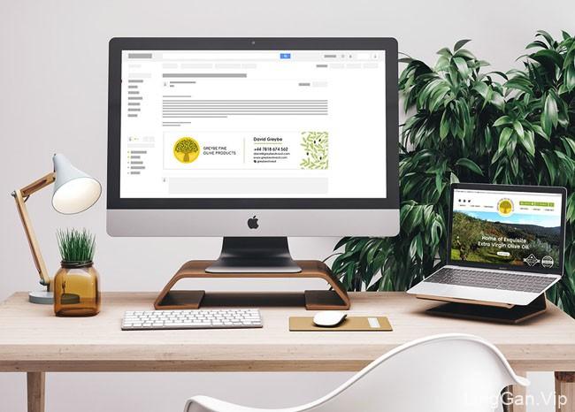 橄榄制品食品品牌形象设计