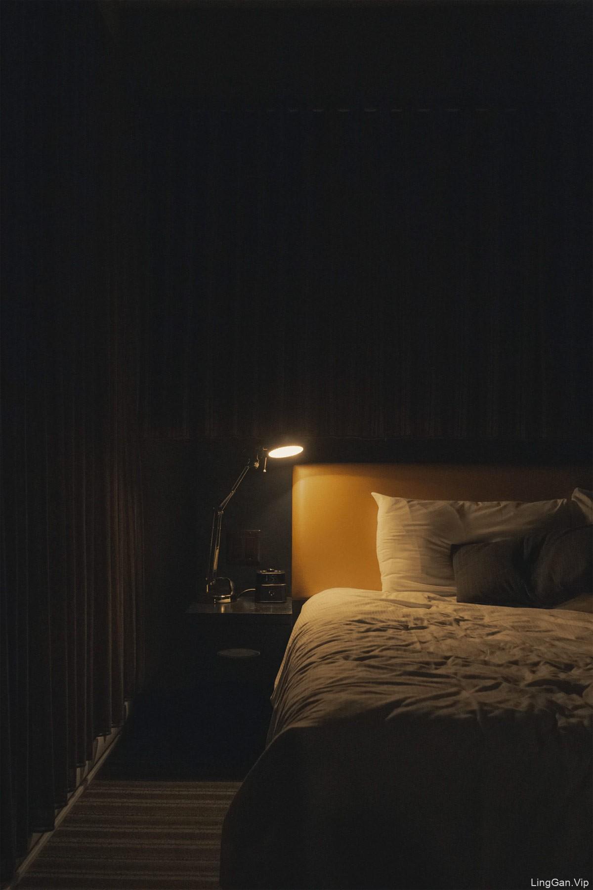 奢华配色!度假公寓品牌VI设计