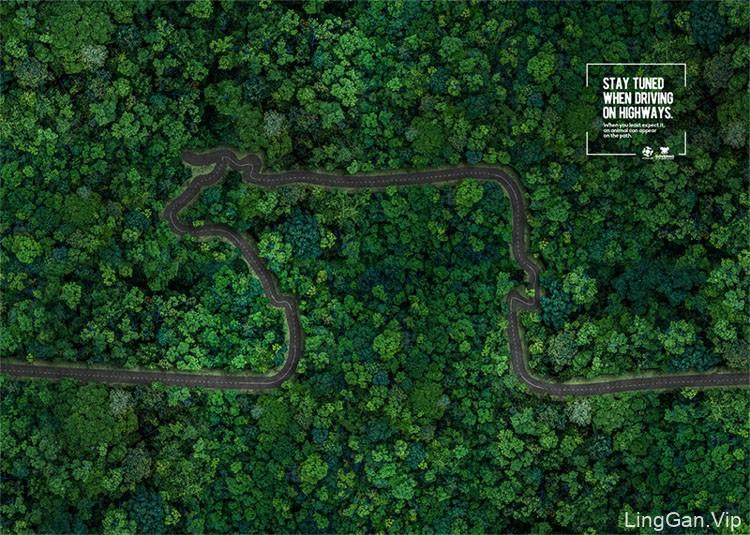 巴西国家交通部宣传广告:高速公路上的动物