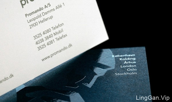国外MuggieRamad Promando企业创意名片设计