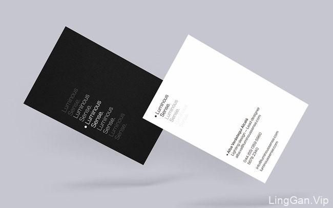 墨西哥Sergio Vichique个性商务名片设计欣赏