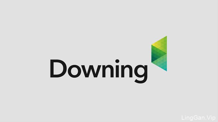英国新能源集团Downing品牌形象设计