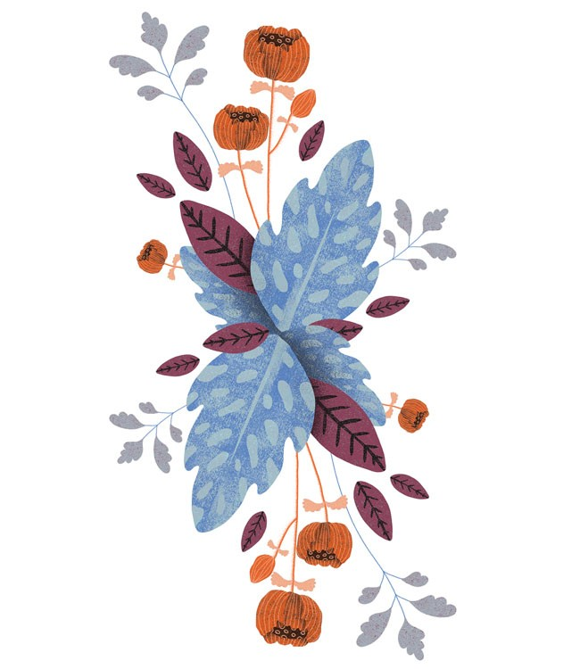 波兰设计师Anna Rudak装饰插图设计