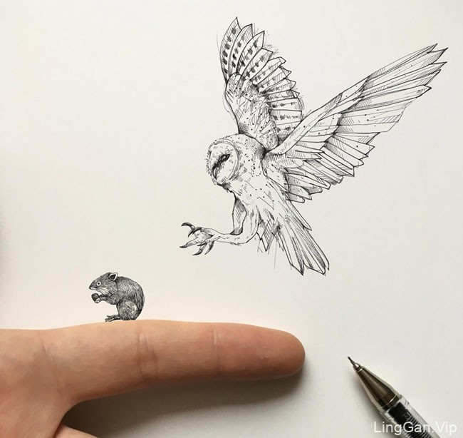 Alfred Basha创意手绘动物插画设计