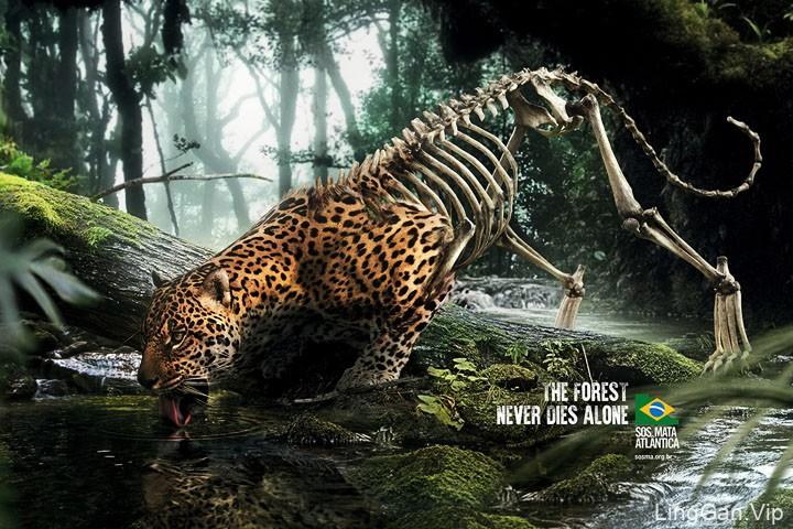 巴西SOS MA森林保护系列创意广告设计