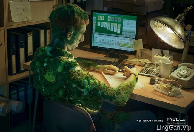 南非PNET人才网系列创意广告设计作品