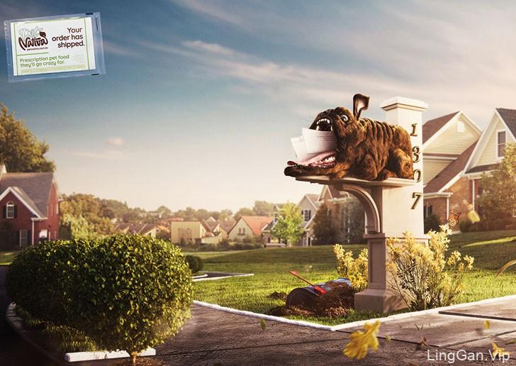 Pet Nativa宠物食物递送品牌平面创意广告