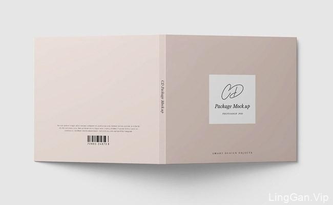 简约风格的CD模版设计