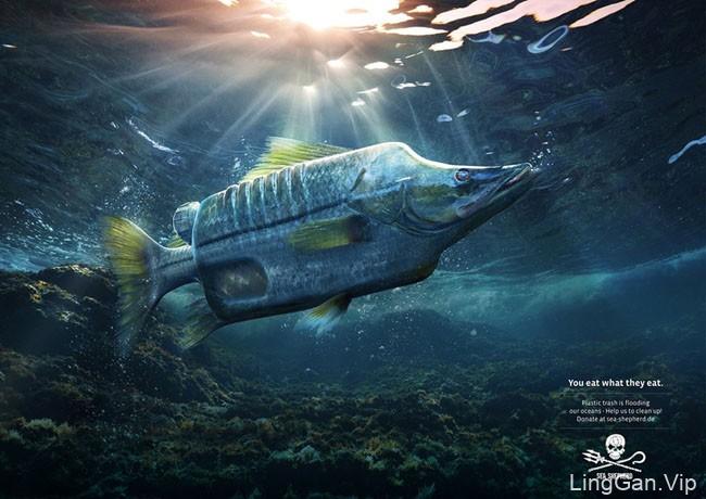 SEA SHEPHERD海洋保护宣传公益广告