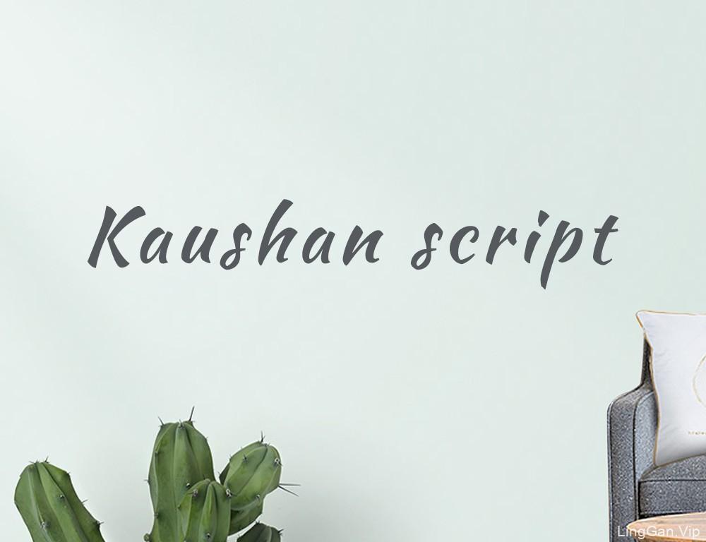 干货!23款网页设计师必备私藏英文字体